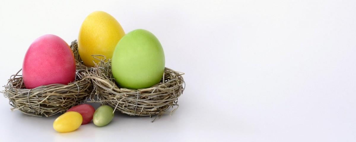 boiled-eggs-bright-cheerful-372173
